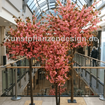 036_kirschbluetenbaeume_180-300cm