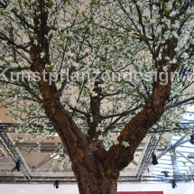040 pfirsichblütenbaum h.500cm,dm.350cm-detail