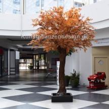 047 ahornbaum herbstbunt h.400,dm.250cm
