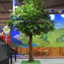 050 lindenbaum h.500cm,dm.400cm